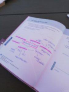 Doelen stellen met de Purpuz planner - Lievelyne